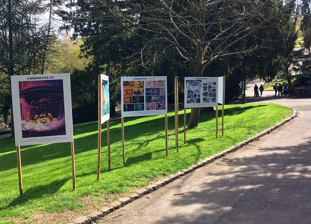 Marsupilami - Aventures au Zoo de Mulhouse - 17